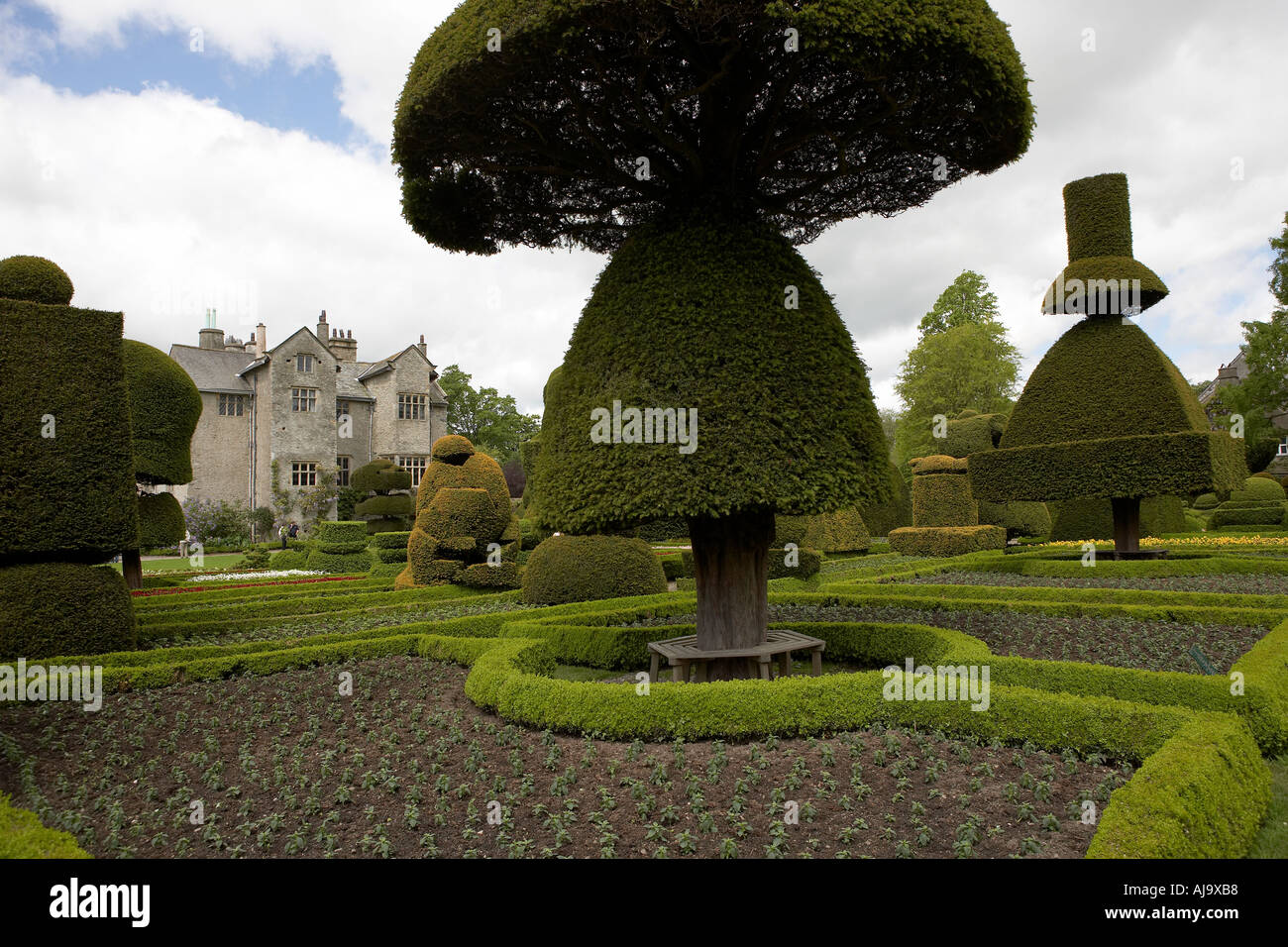 Levens hall and gardens lake district cumbria topiary gardens Stock ...
