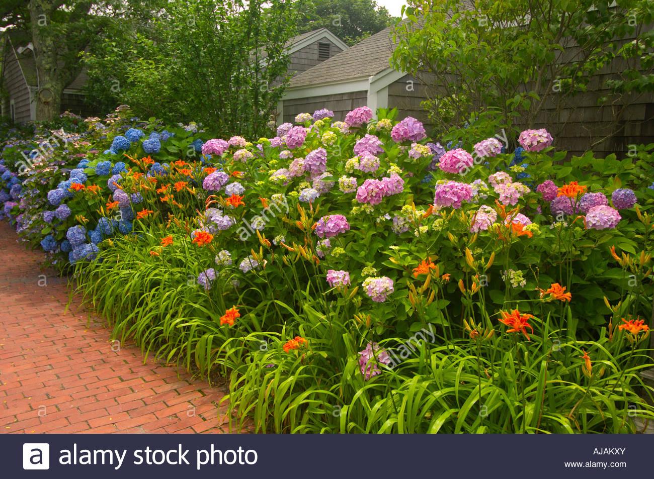 Flower Gardens Nantucket Town Nantucket Island Massachusetts USA