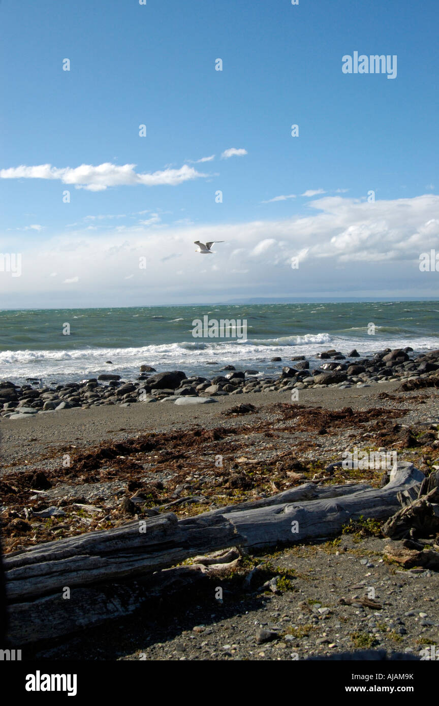 Scenic View over Patagonic Seascape Otway near Punta Arenas Chile. - Stock Image