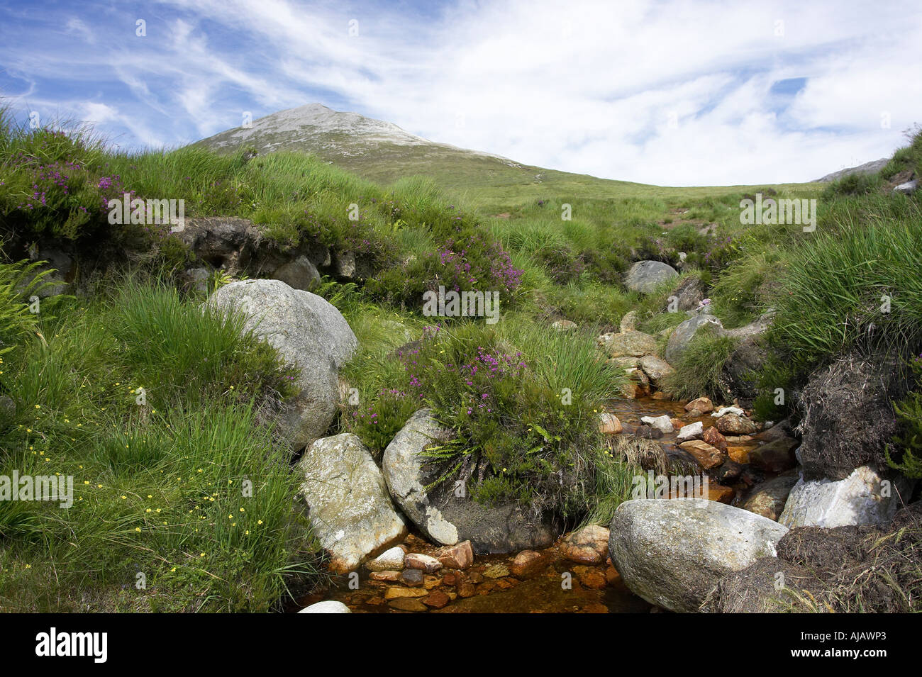 mountain stream through peat bog at Errigal mountain donegals highest peak against a blue sky between dunlewey and gweedore - Stock Image