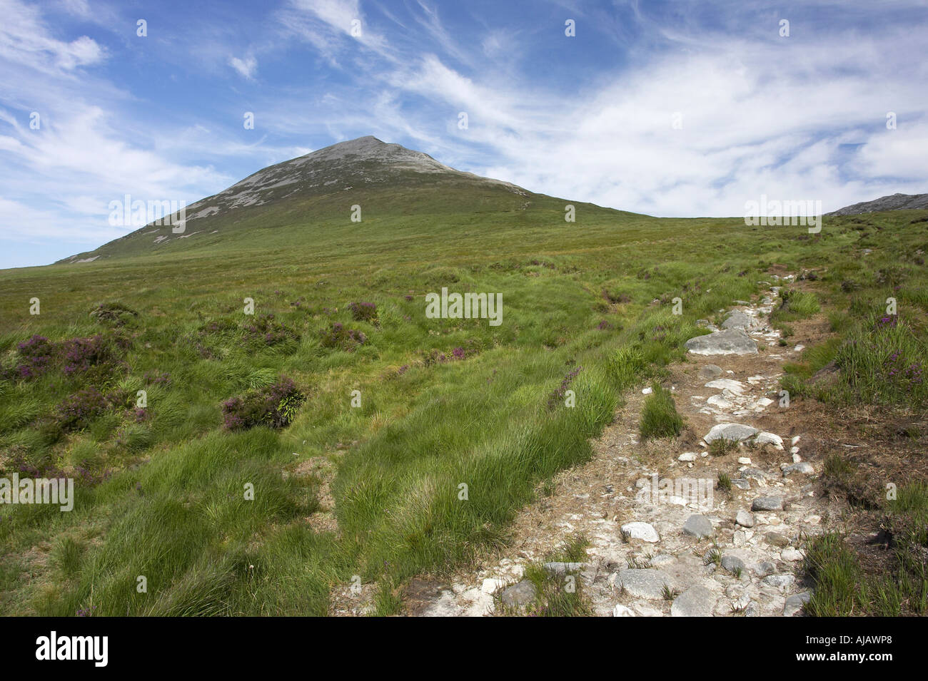 hill walkers path to summit of Errigal mountain donegals highest peak against a blue sky between dunlewey and gweedore - Stock Image