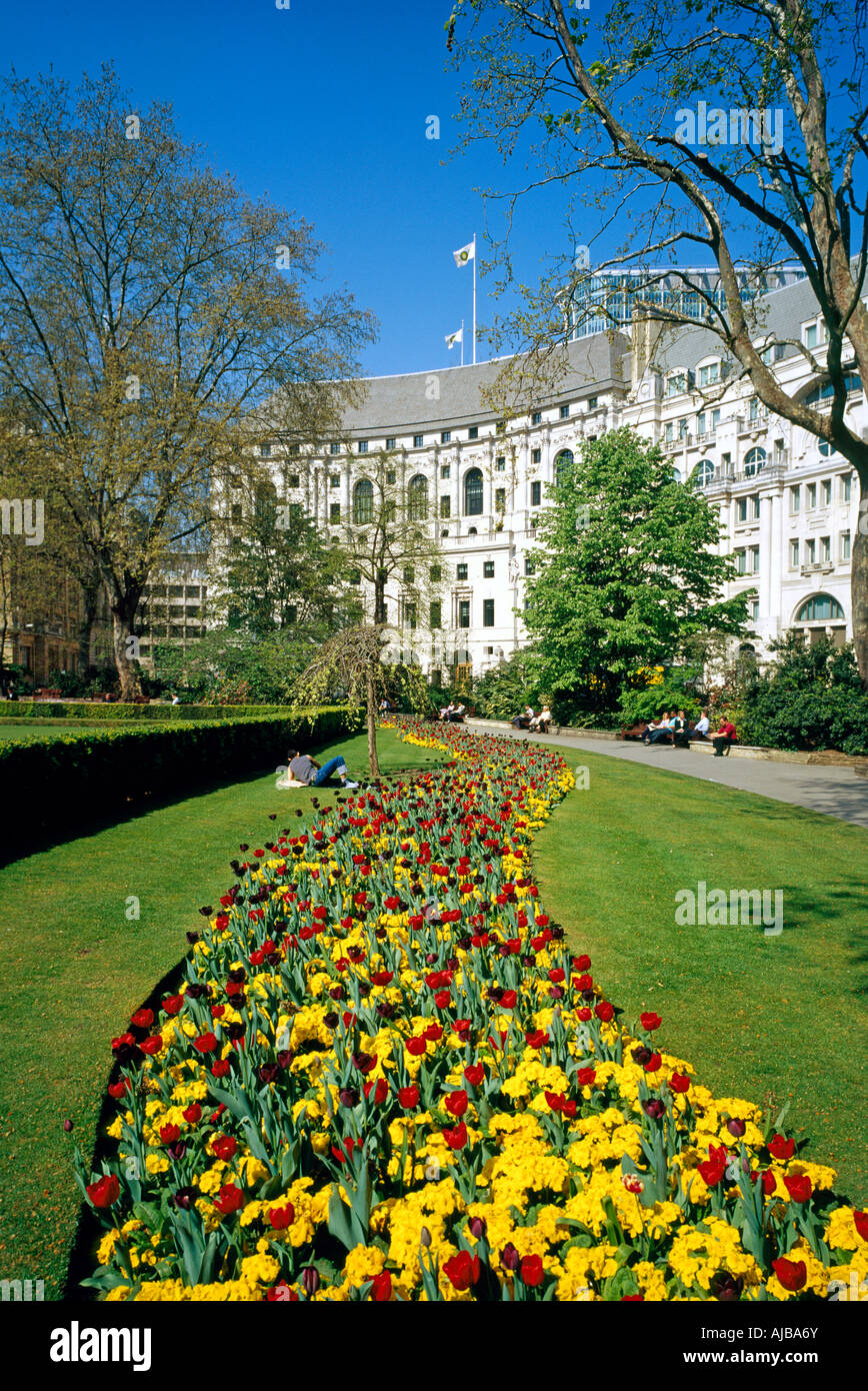 Finsbury Circus in springtime with flowerbeds London EC2 England MXXZsm - Stock Image