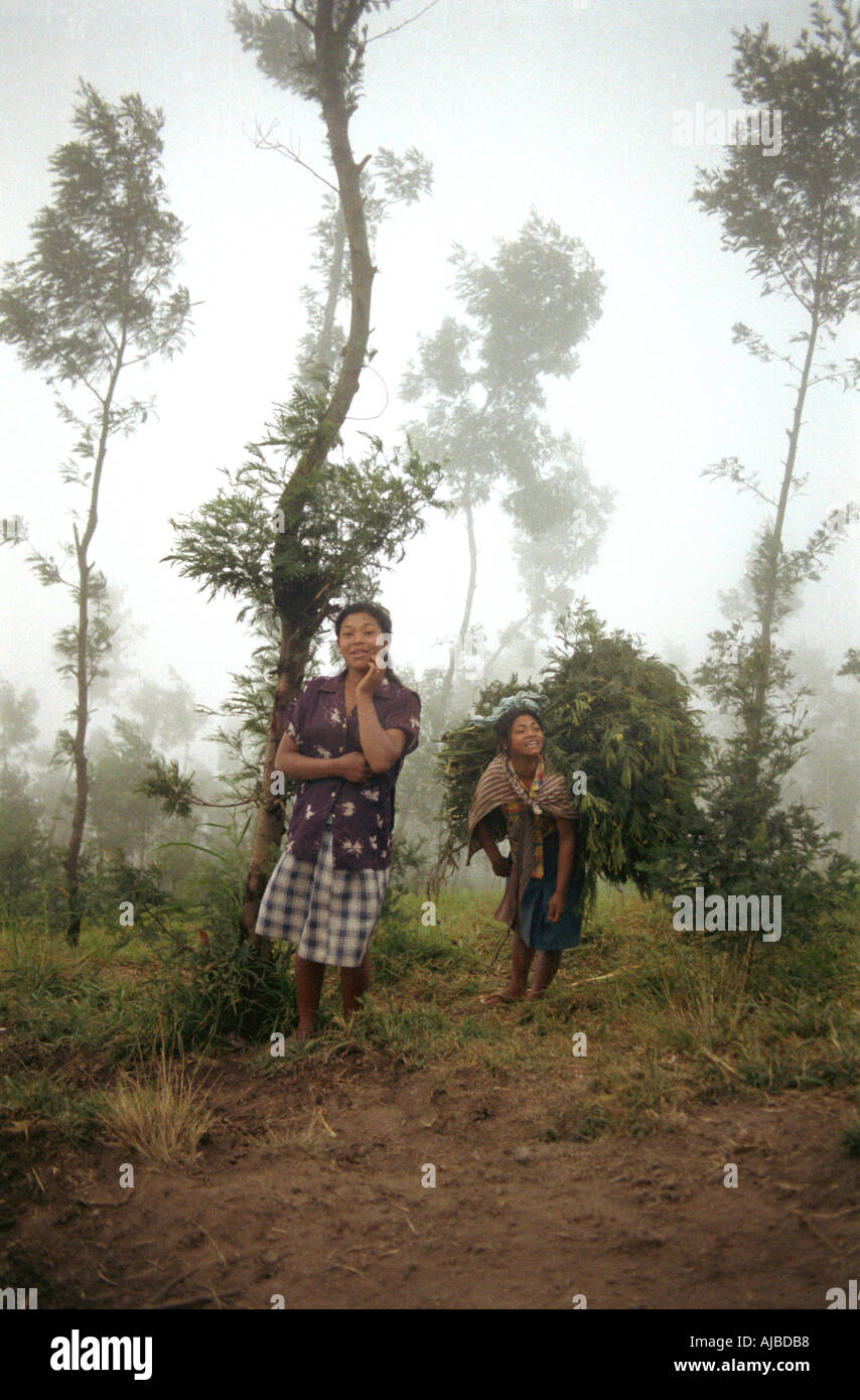 Dawn encounter with 2 Javanese women on the slopes of Gunung Mount Merapi nr Selo Java Indonesia Stock Photo