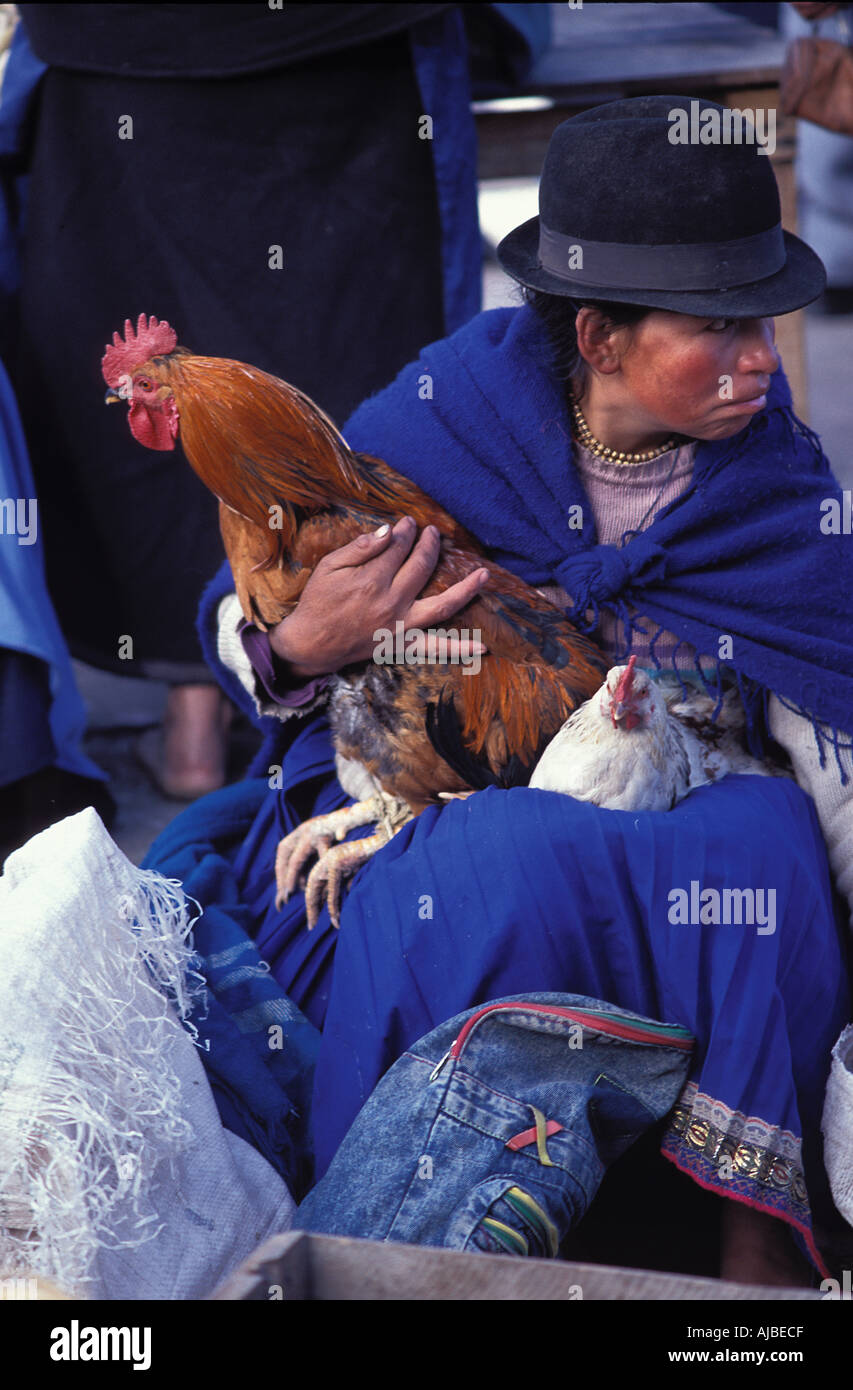 Poultry vendor at market Otavalo is one of Ecuador s most popular tourist destinations not least for its market Stock Photo