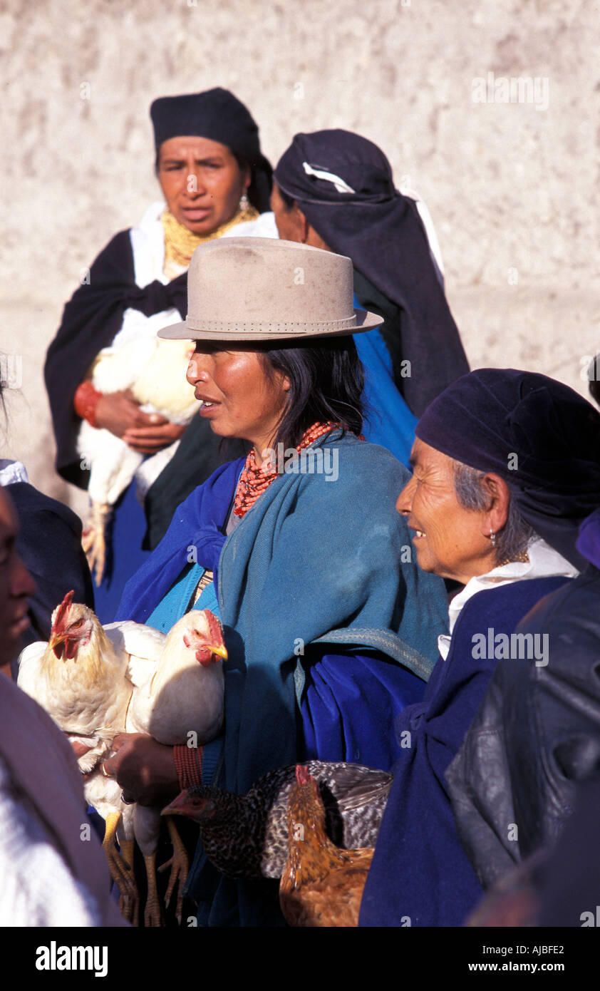 Poultry vendors Otavalo is one of Ecuador s most popular tourist destinations not least for its market Stock Photo
