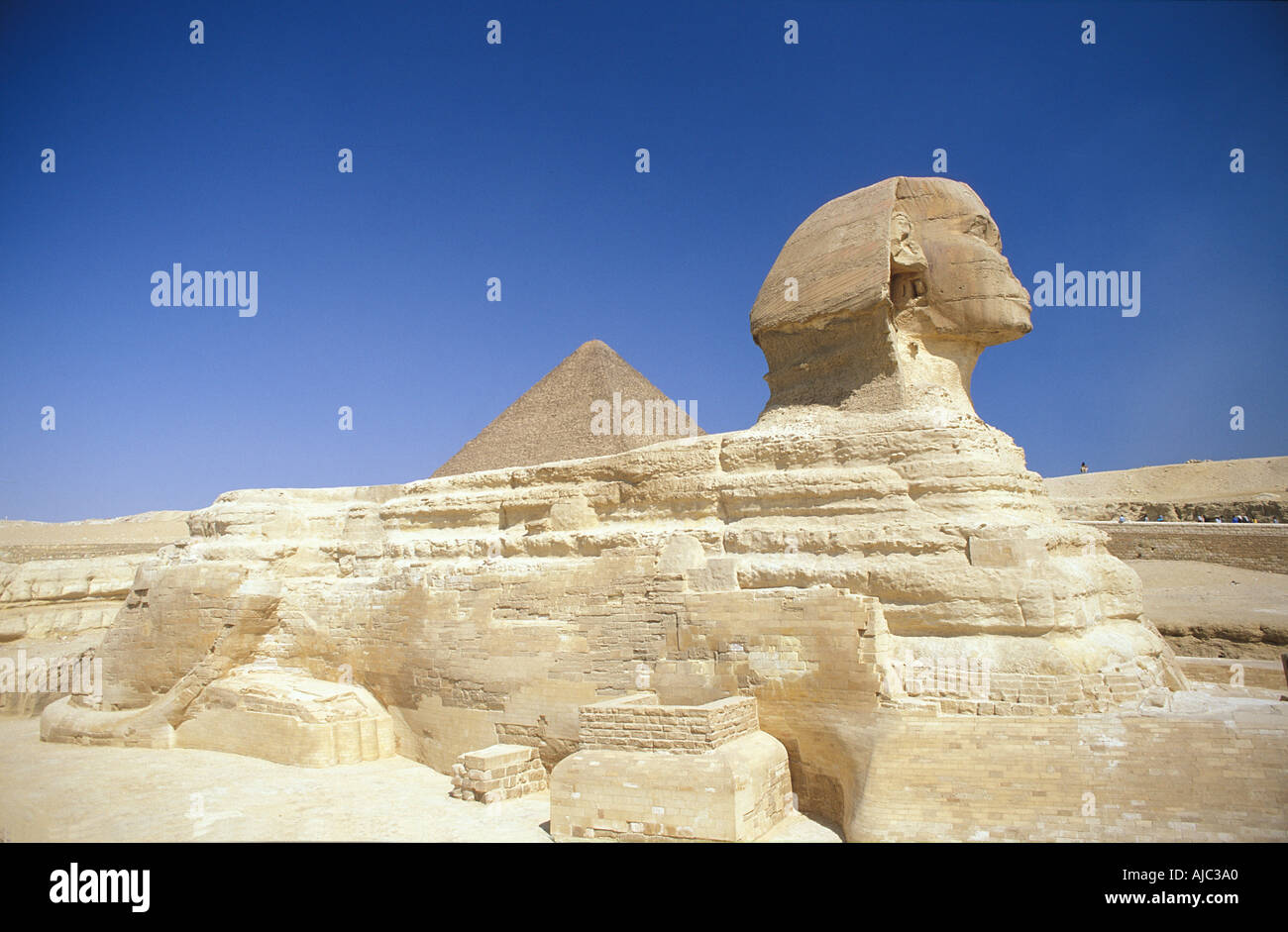 The Sphinx and pyramid of Khufu The Pyramids Giza Cairo Egypt - Stock Image
