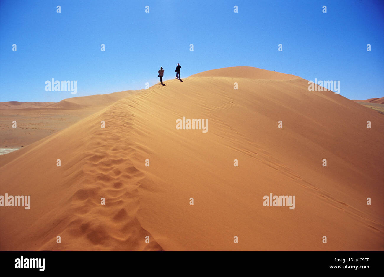 Climbing the sand dune of Sossusvlei Namib Naukluft National Park Namibia Stock Photo