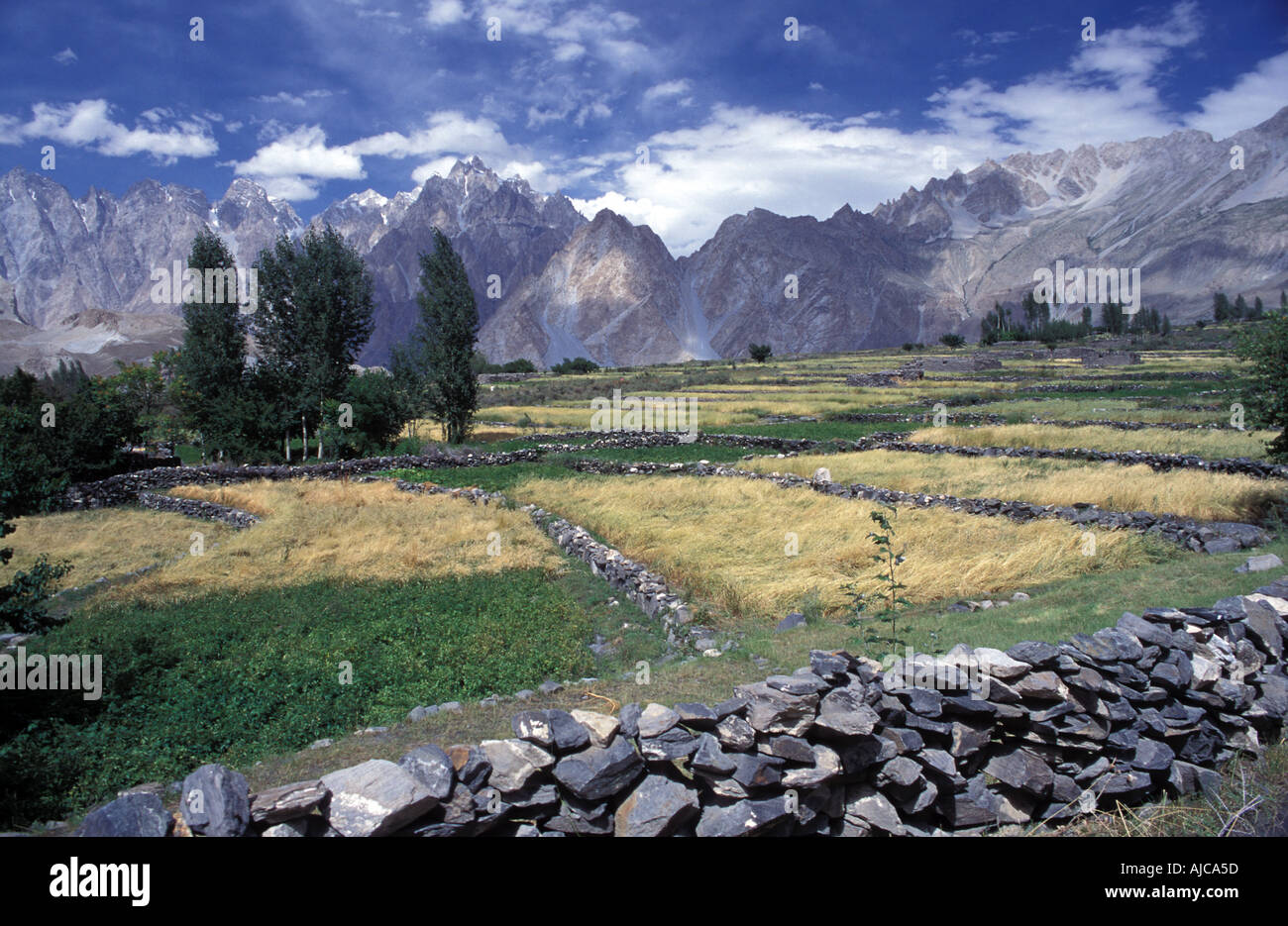 Beautifully sited Zarabad village Gojal Hunza A short walk from Passu base for some of Pakistan s best day walks Stock Photo