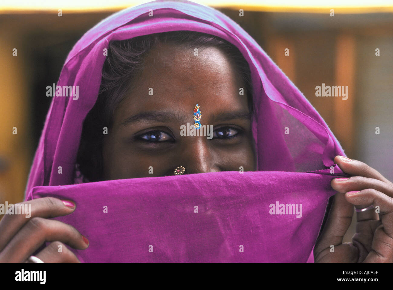 Friendly Hindu woman from Uttar Pradesh with magenta headcloth veiling her smile India - Stock Image