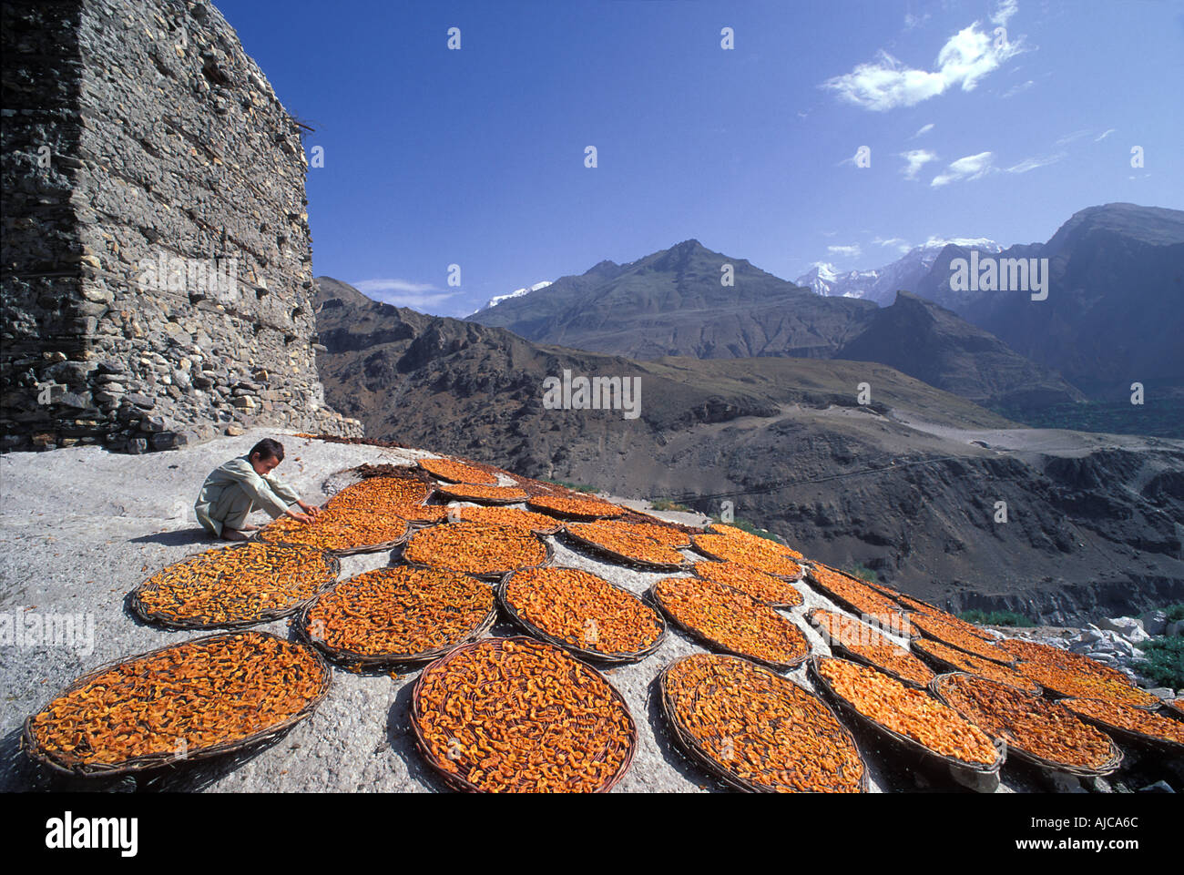 PAKISTAN Sunbaked Apricots laid in baskets to dry Altit Fort Karimabad Hunza Valley Karakoram Highway Pakistan - Stock Image