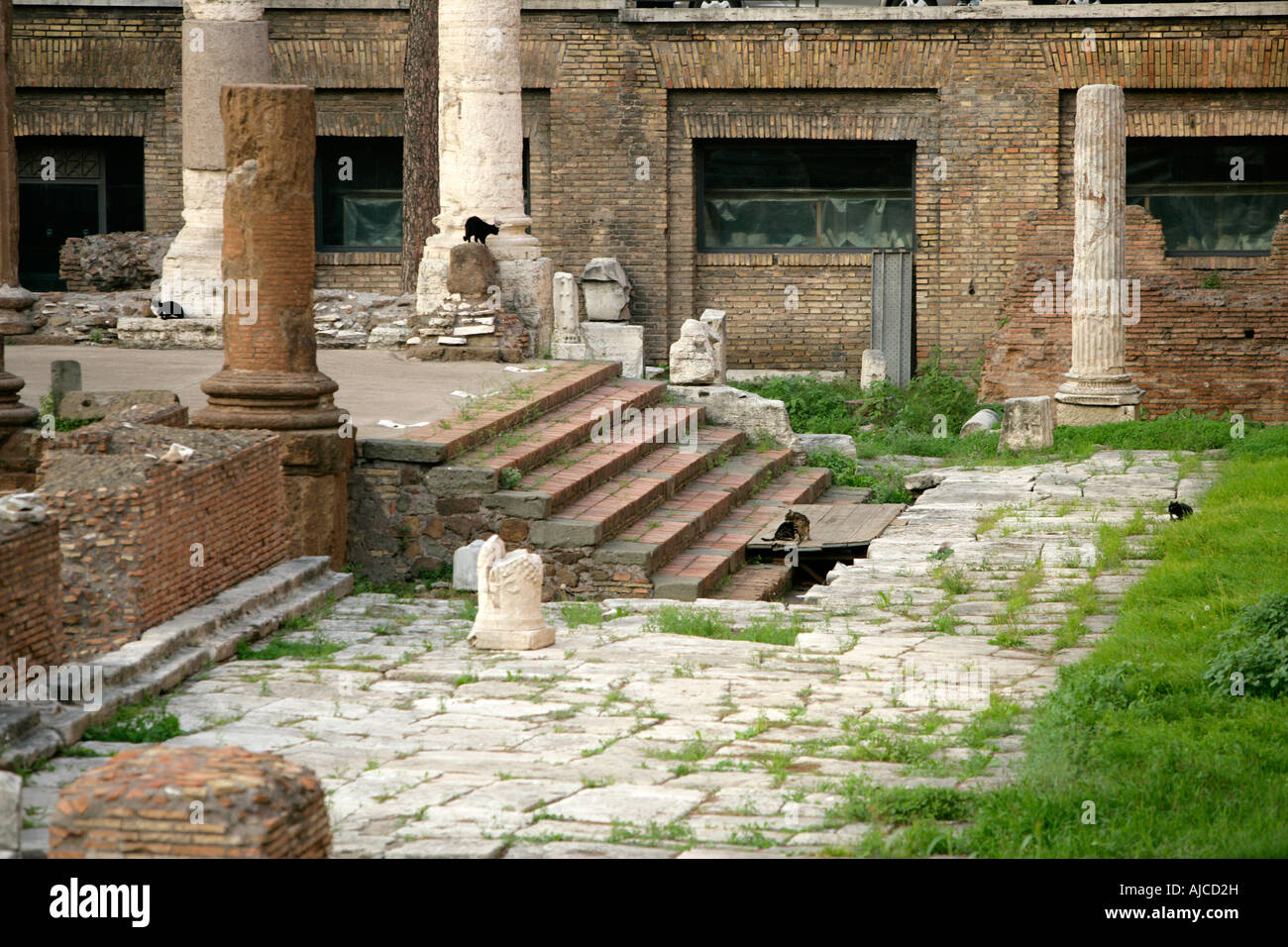 Earliest Ancient Roman Temples In The Largo Di Torre Argentina, Rome, Italy - Stock Image
