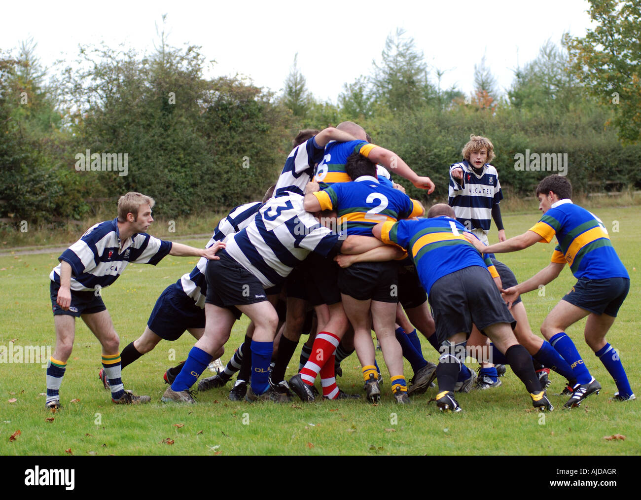 Rugby Union at club level, Leamington Spa, Warwickshire, England, UK - Stock Image