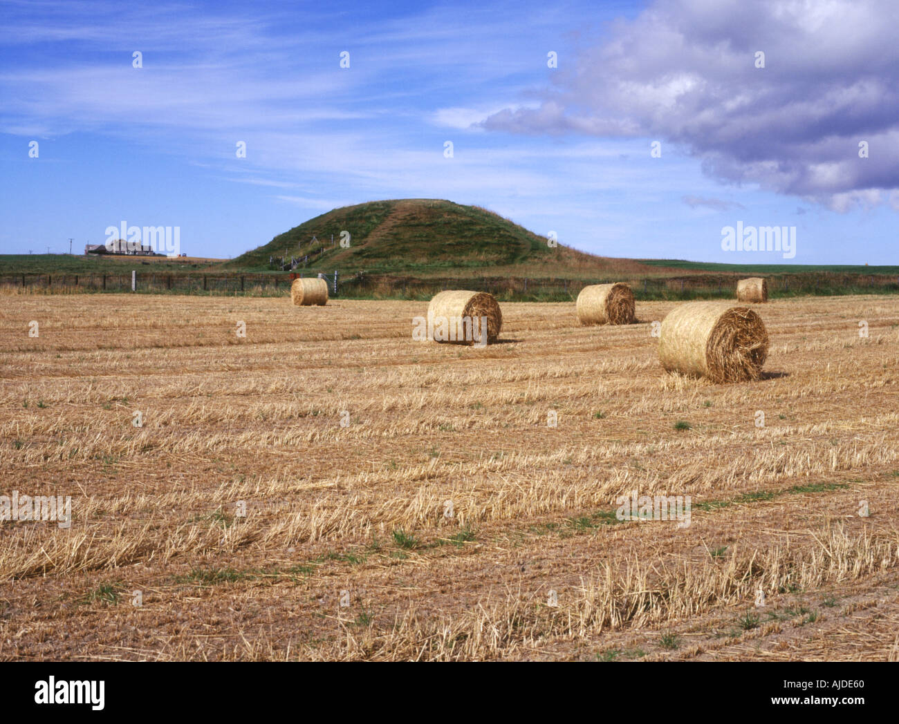 dh Neolithic burial mound MAESHOWE ORKNEY Field farm bales prehistoric chamber tomb bronze age site - Stock Image