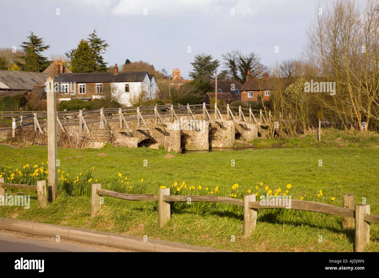 Tilford Surrey England UK Daffodils on green by old East Bridge crossing River Wey in historic village in spring - Stock Image