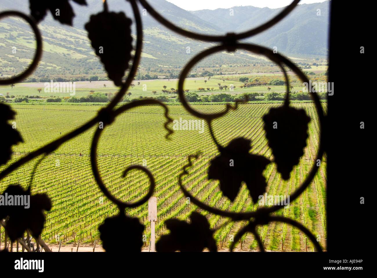 Chile Colchagua Valley Wine Country Vineyard Metal Door