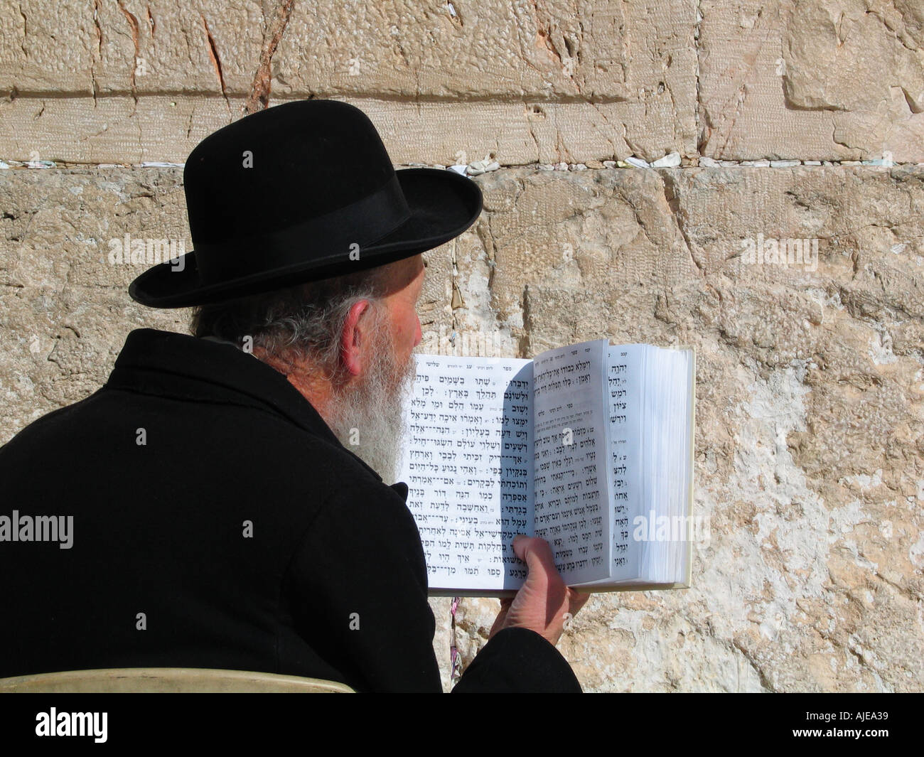An Orthodox Jew reading Siddur prayer book beside the Western or Wailing Wall in the old city East Jerusalem Israel - Stock Image