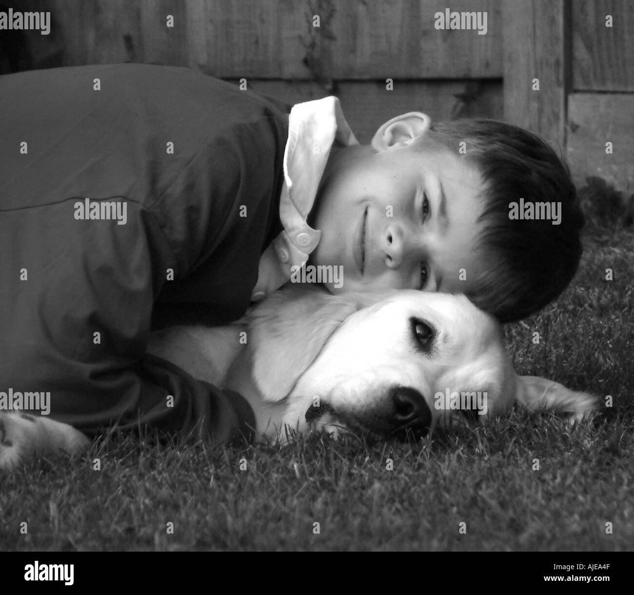 boy cuddling golden retriever dog - Stock Image