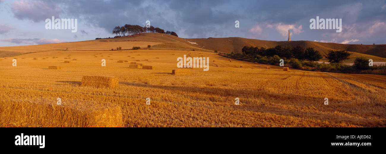 A view of a field of haystacks with chalk outline of a white horse at Cherhill Down Wiltshire Stock Photo