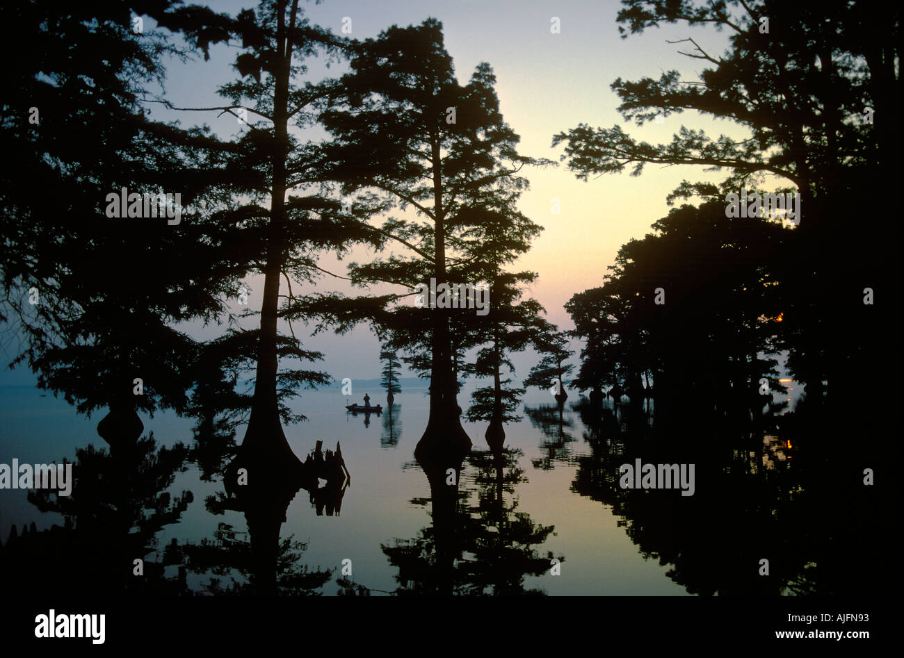 Reelfoot Lake Dawn Tennessee Stock Photo: 4807058 - Alamy