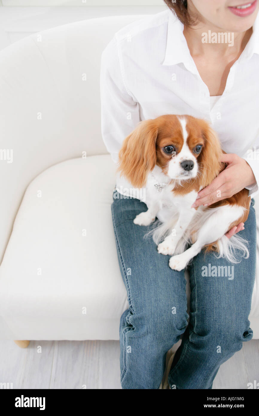 Young woman and cavalier king Charles spaniel - Stock Image
