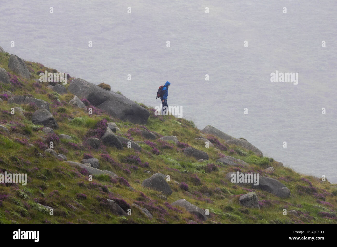single man hillwalking along ridge on a wet miserable rainy summer day in the mourne mountains county down northern Stock Photo