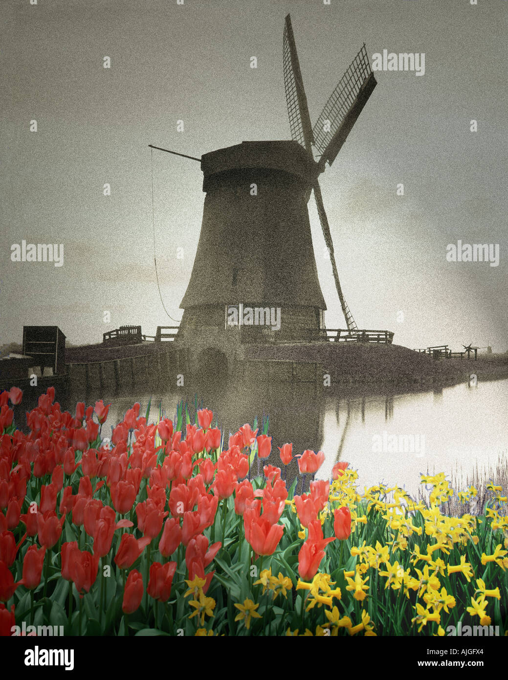 NL - NORTHERN HOLLAND:  Windmill at Schermerhorn - Stock Image