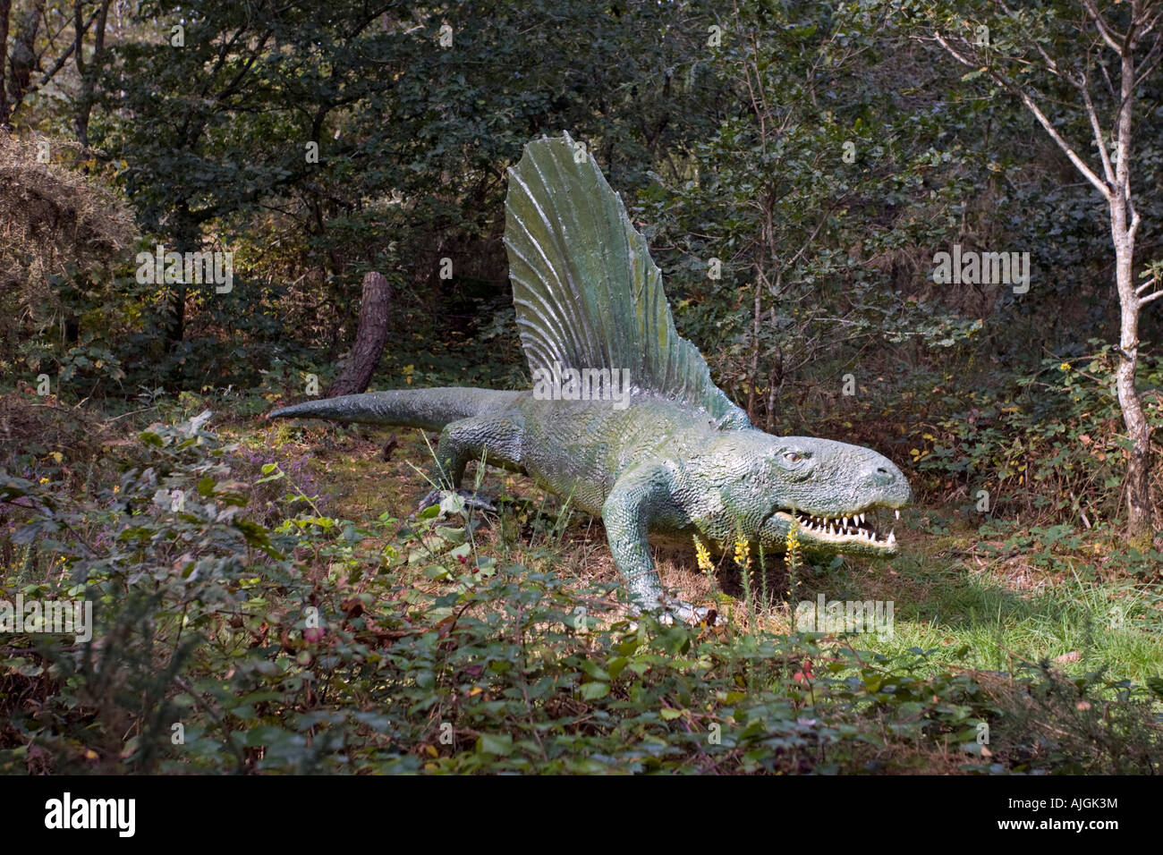 Lifesize model Dimetrodon an extinct predatory synapsid pelycosaur reptile Permian period Dinosaur Park France - Stock Image