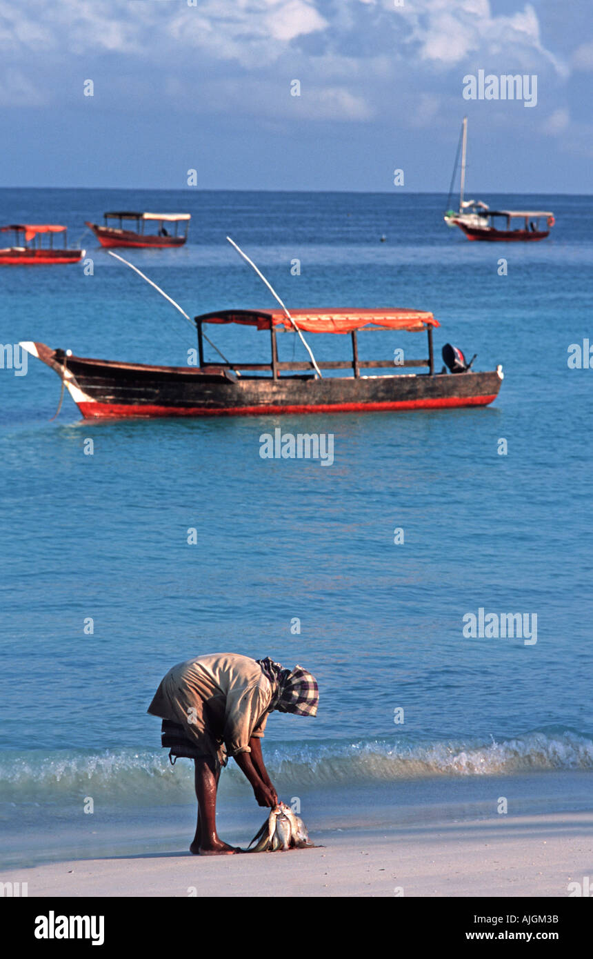 Fisherman on the beach with his catch of fresh fish Nungwi Unguja Zanzibar Tanzania East Africa - Stock Image
