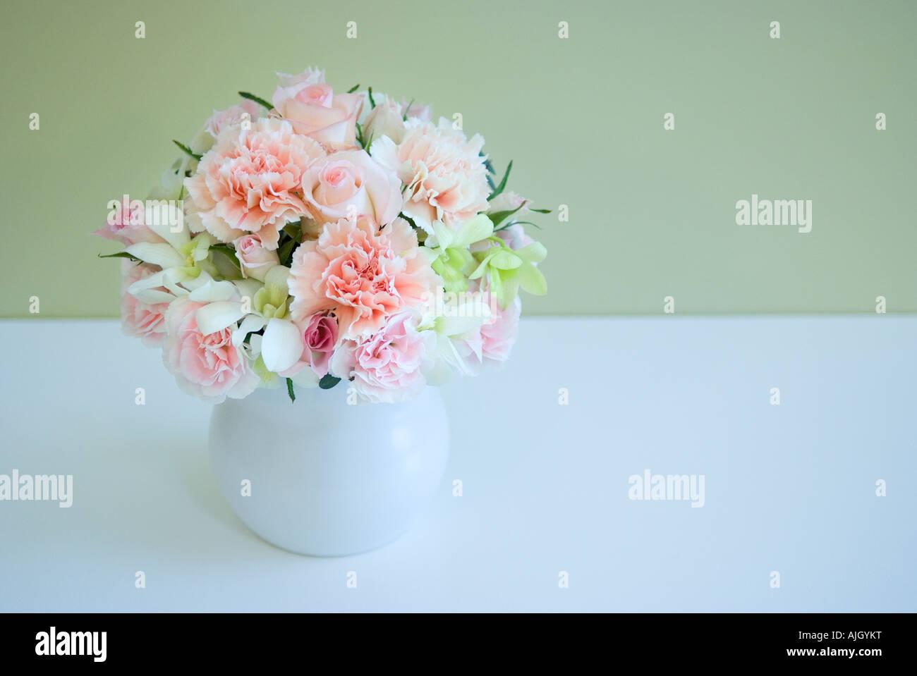 Carnations in vase - Stock Image