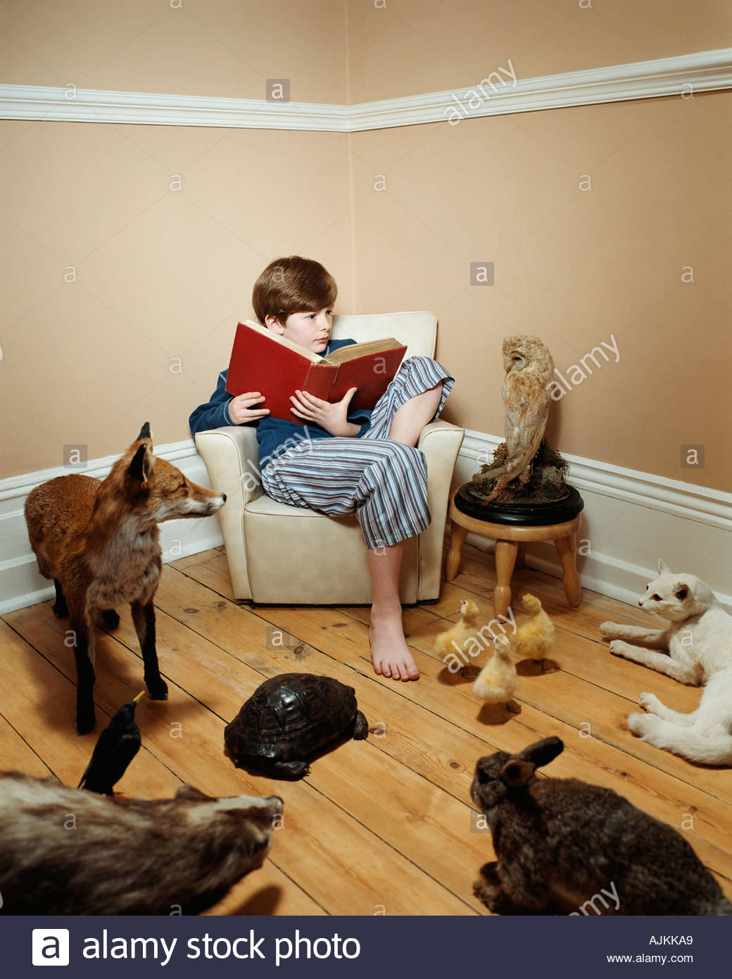 Boy reading a story to stuffed animals - Stock Image