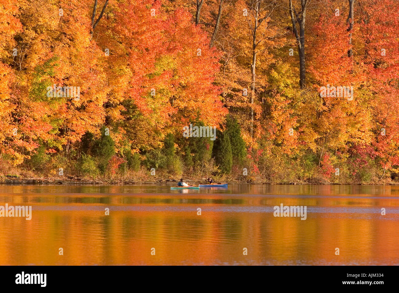 People kyaking on golden lake with reflective fall foliage - Stock Image