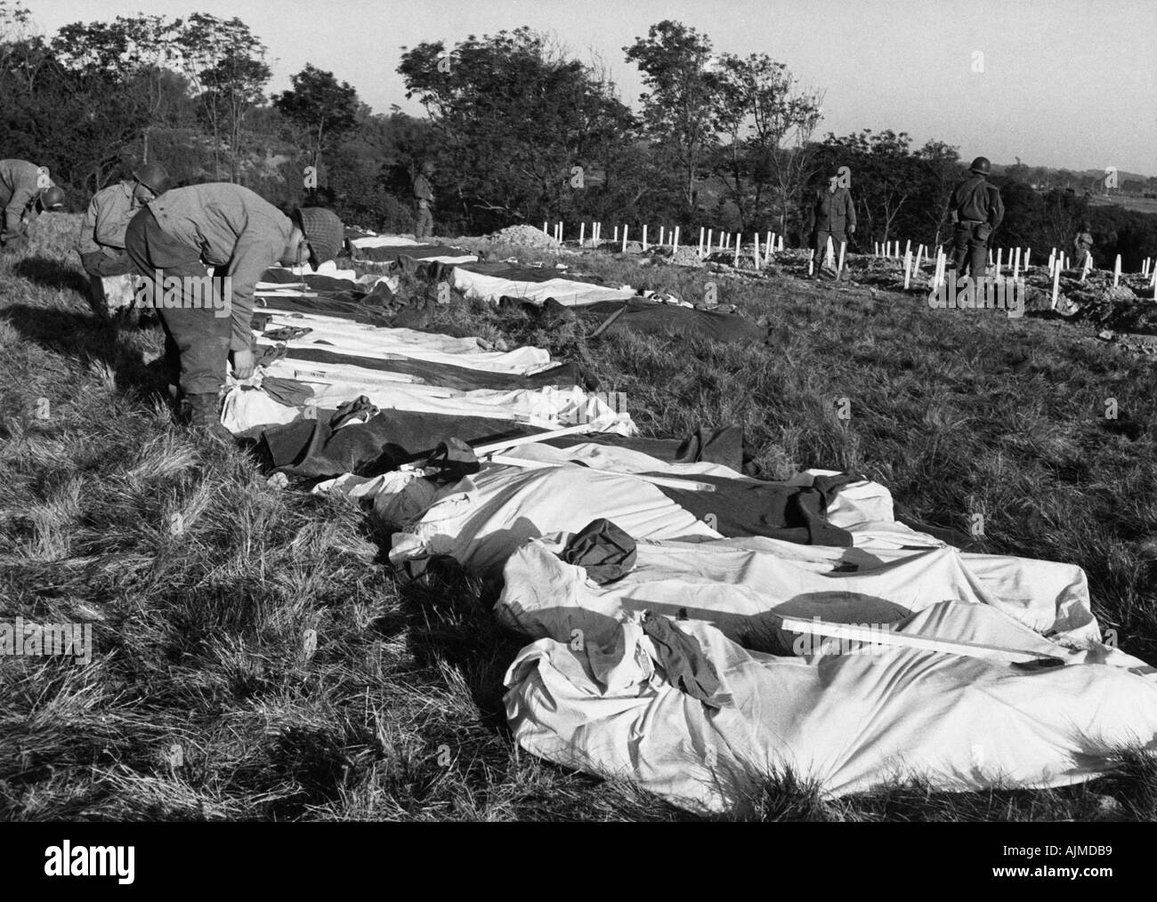 Ww2 D Day Us Casualties Await Temporary Burial In Normandy  Each With A White Stake Marked With His Iden Y