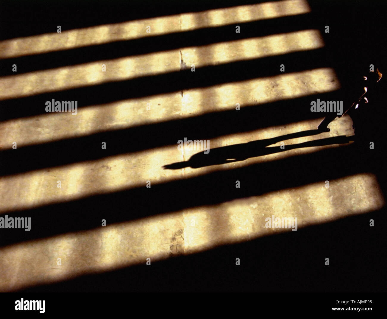 Person standing in shadows - Stock Image