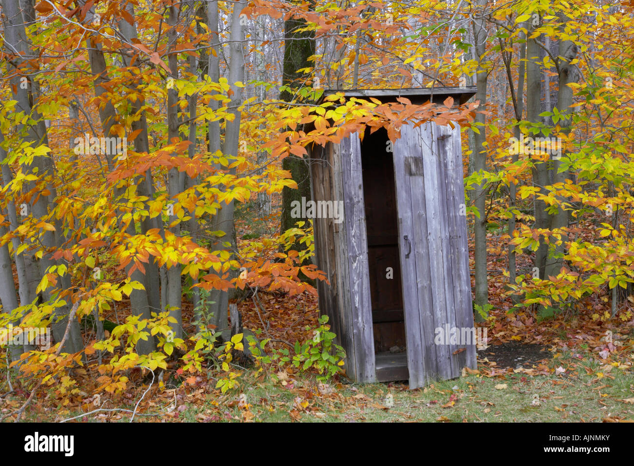 Outhouses in the Adirondack Mountains New York United States - Stock Image