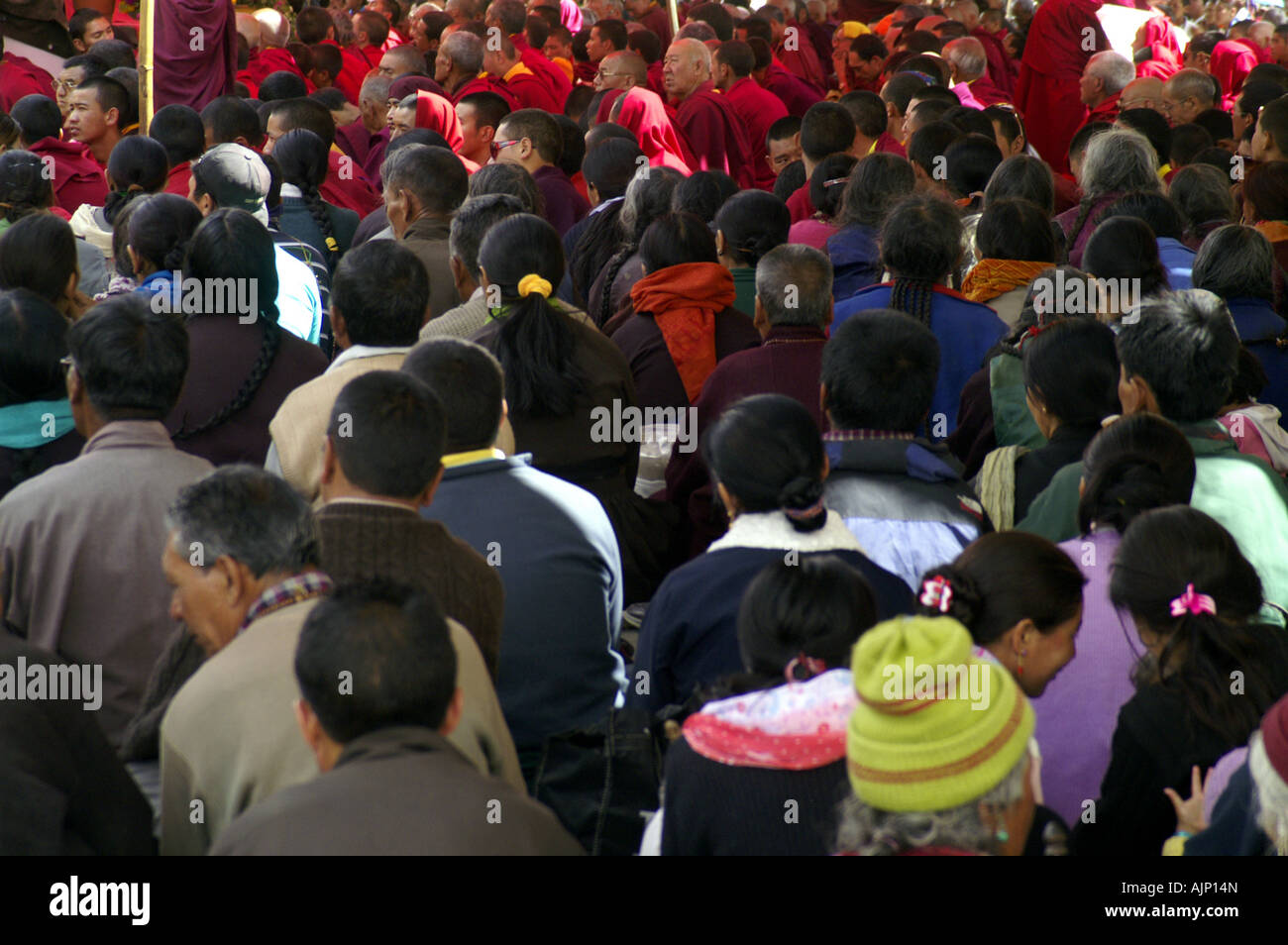 Gathering of many priests and watchers at Phyang monastery in Ladakh, India, ceremony puja holy buddhist celebration - Stock Image