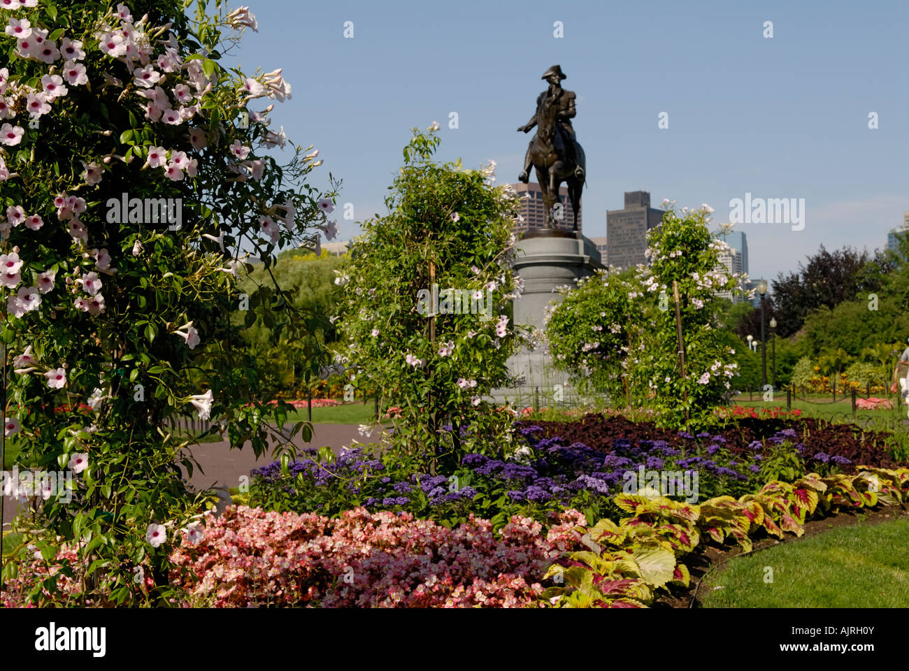 Boston Common Public Gardens - Stock Image