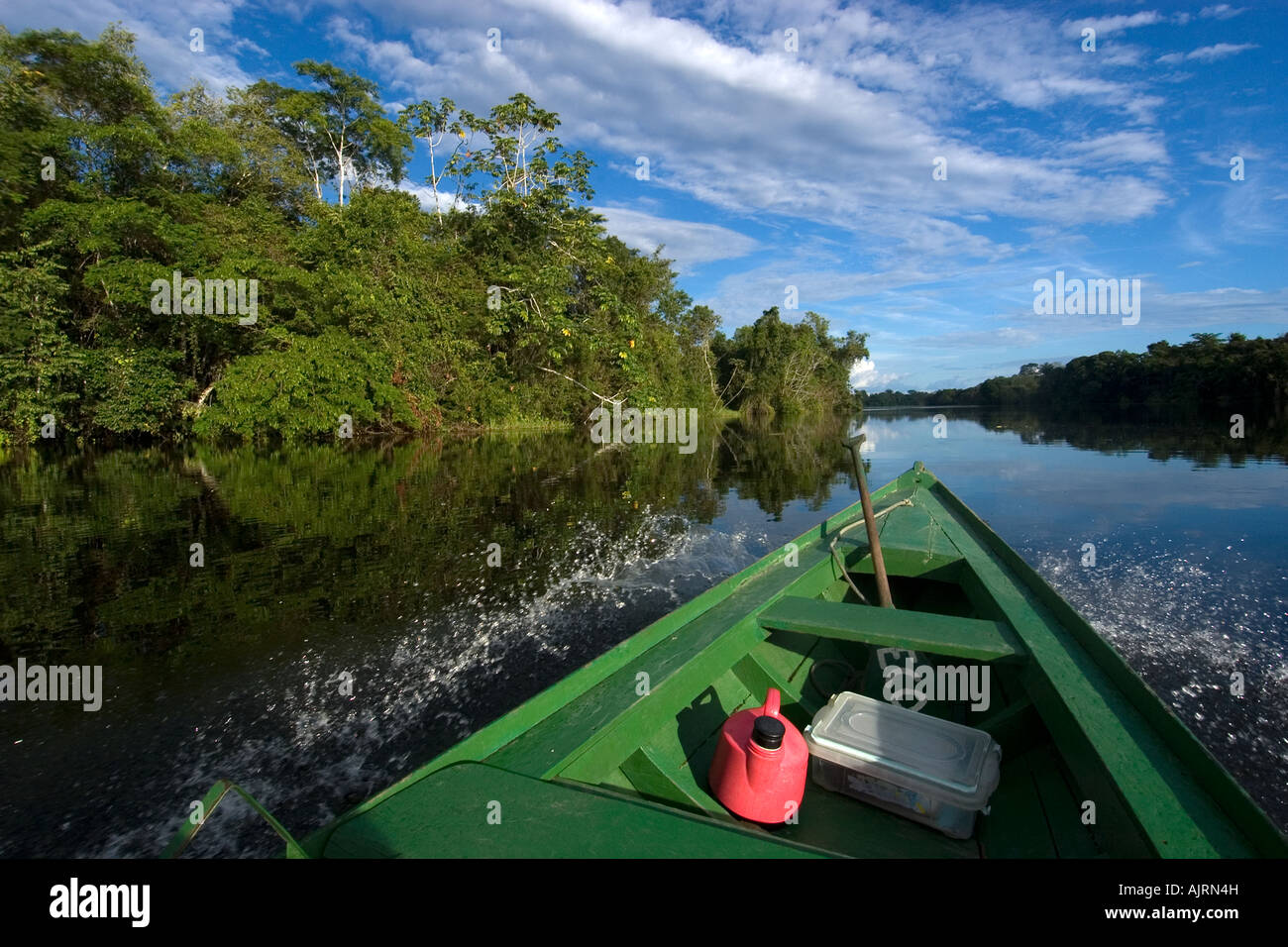 Boat bow and flooded tropical rain forest Mamiraua sustainable development reserve Amazonas Brazil - Stock Image