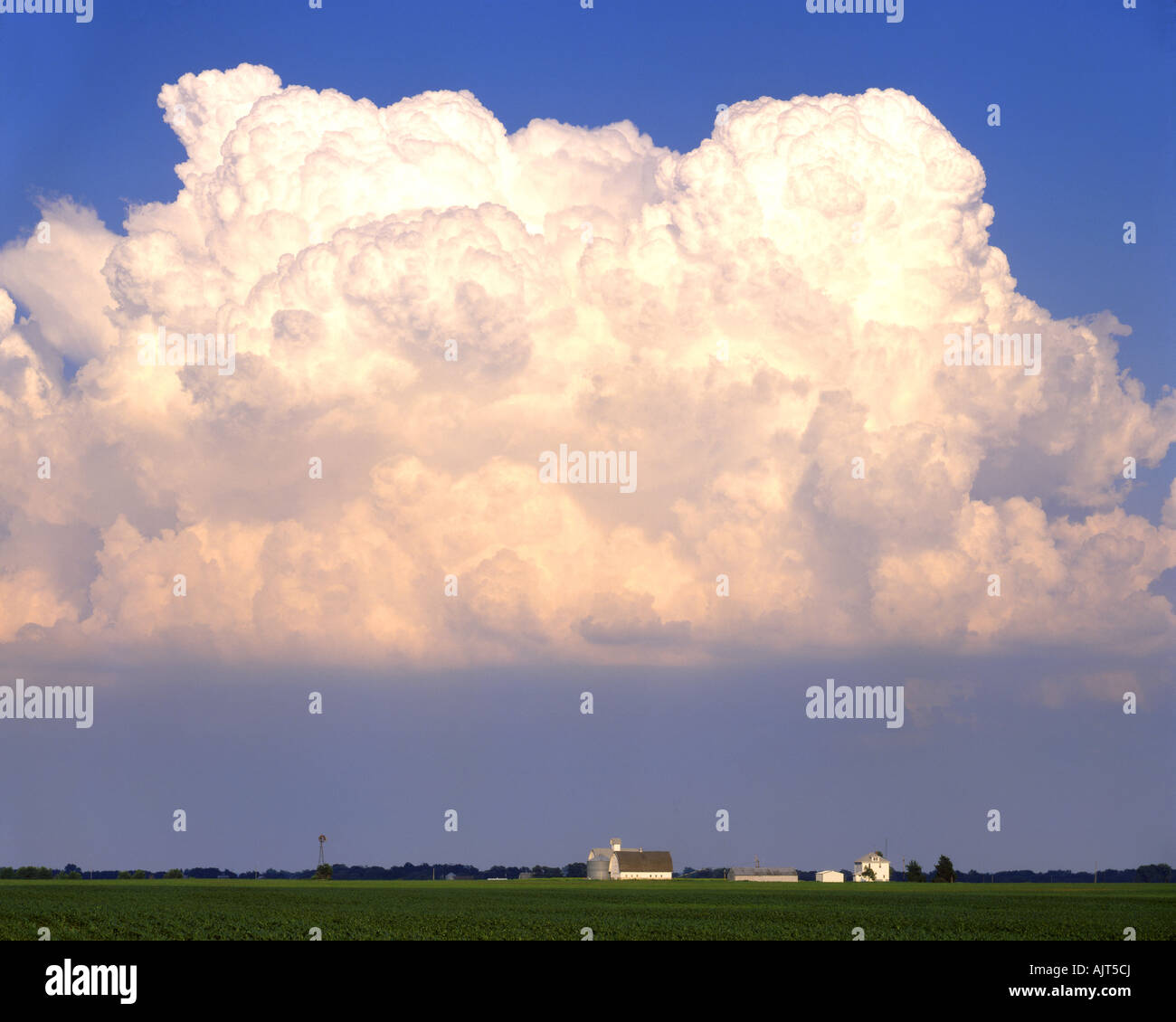 Cumulus clouds over farm in Illinois LaSalle County Ilinois  USA, by Willard Clay/Dembinsky Photo Assoc - Stock Image