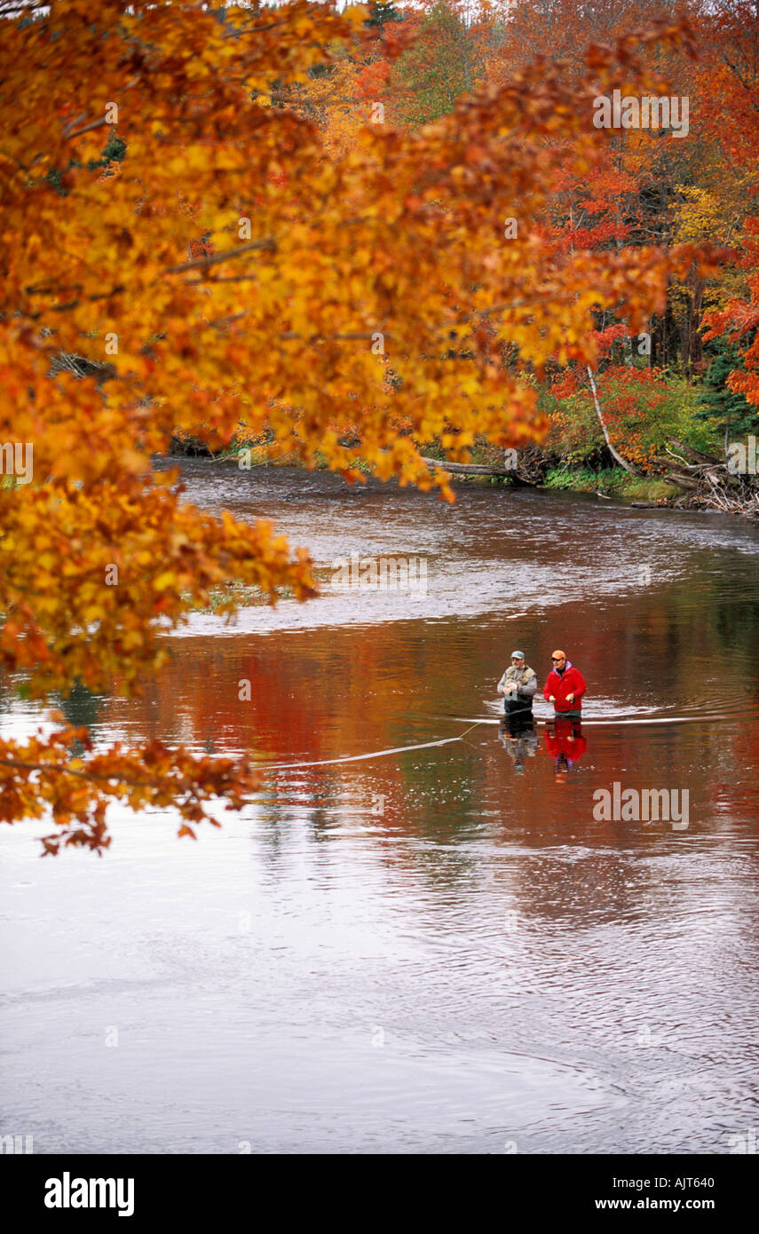 CANADA Nova Scotia Cabot trail fly fisherman fishing for Atlantic Salmon in the Margaree River with atumn colors Stock Photo