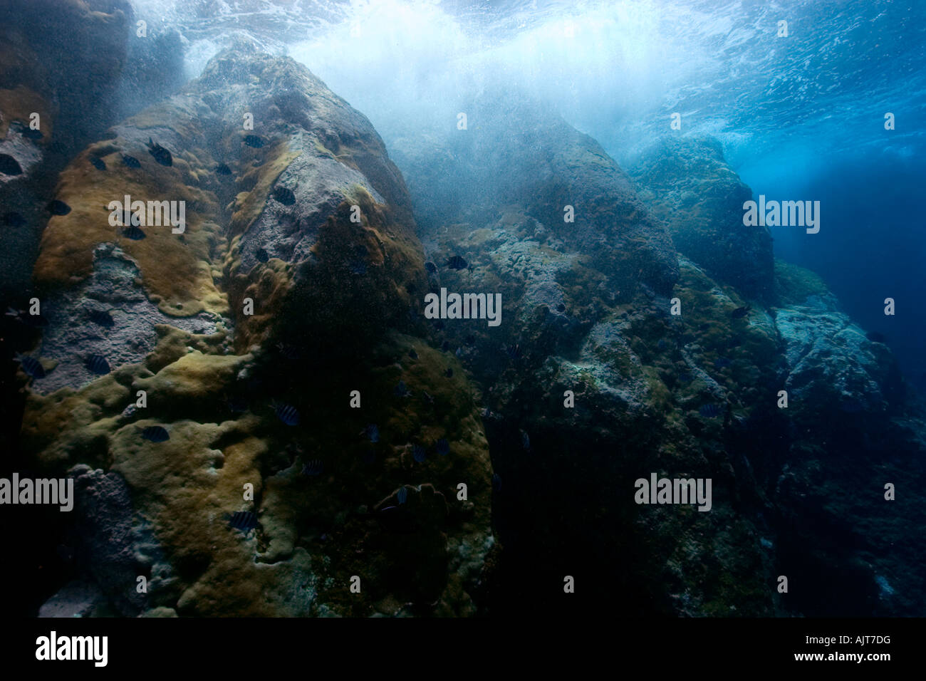 Waves breaking against rocky underwater substrate St Peter and St Paul s rocks Brazil Atlantic Ocean - Stock Image