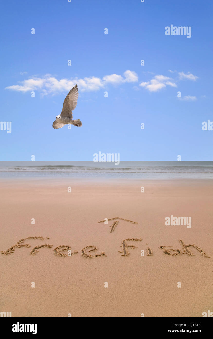Free fish written in sand at the beach with a seagull flying past Stock Photo