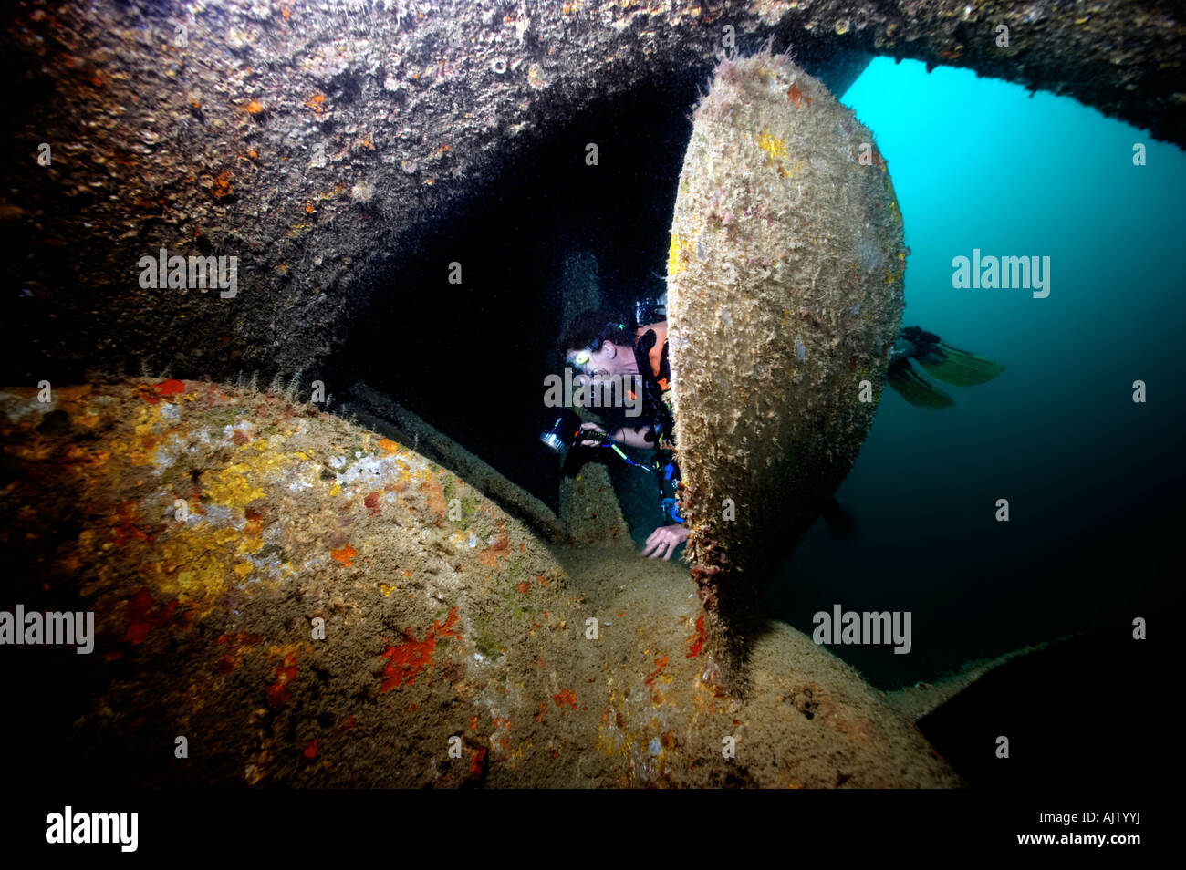 A diver investigates the propeller of The Salem, a shipwreck on Hyndman Reef in the Gulf Of Tadjoura near Djibouti. - Stock Image