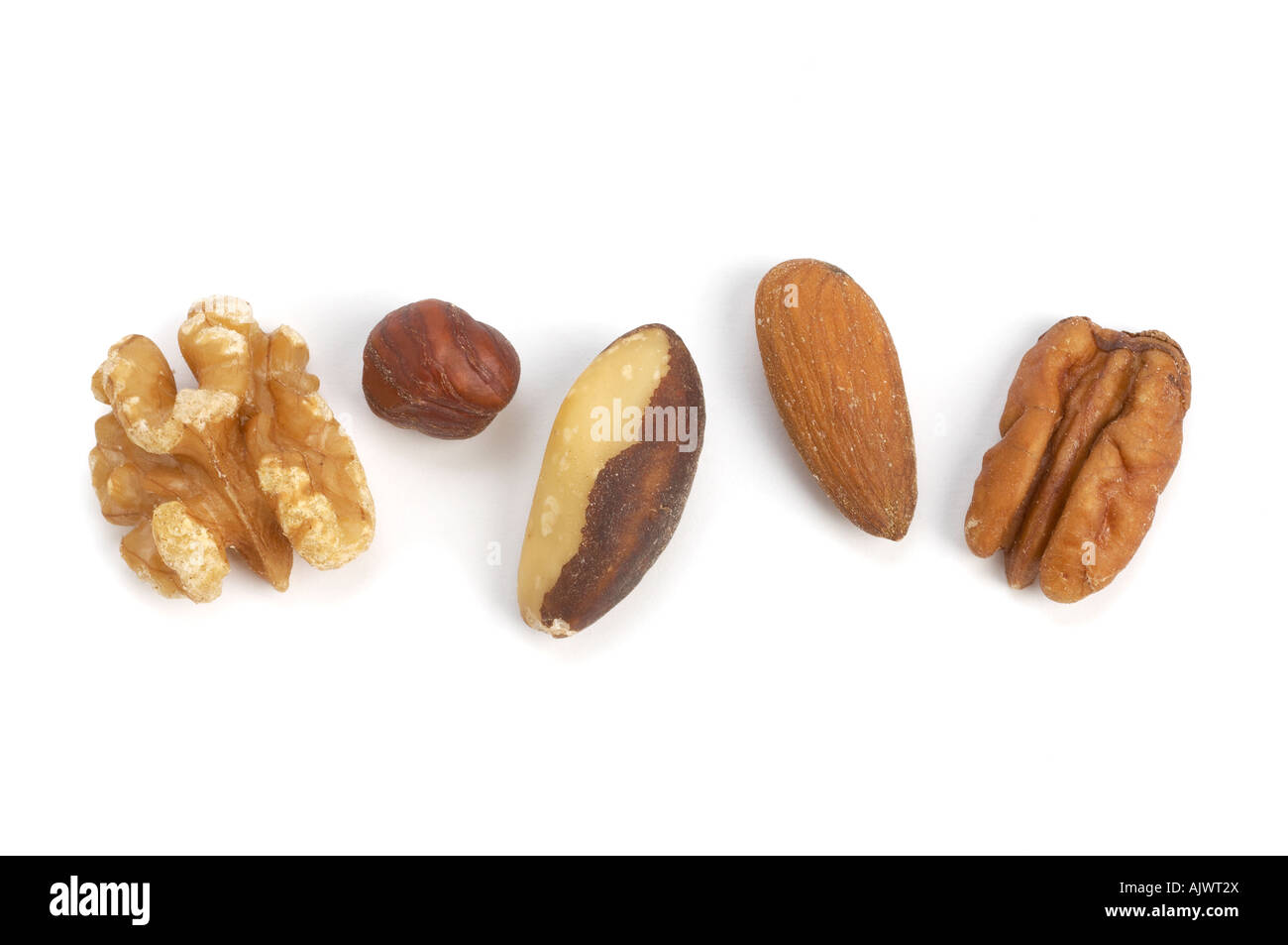 selection of nuts walnuts brazils almonds pecan and hazelnuts - Stock Image