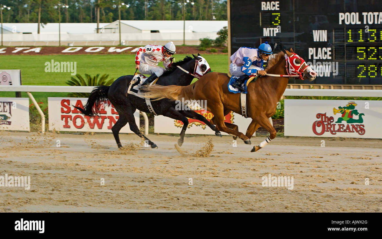 Horses racing towards finish line at racetrack - Stock Image
