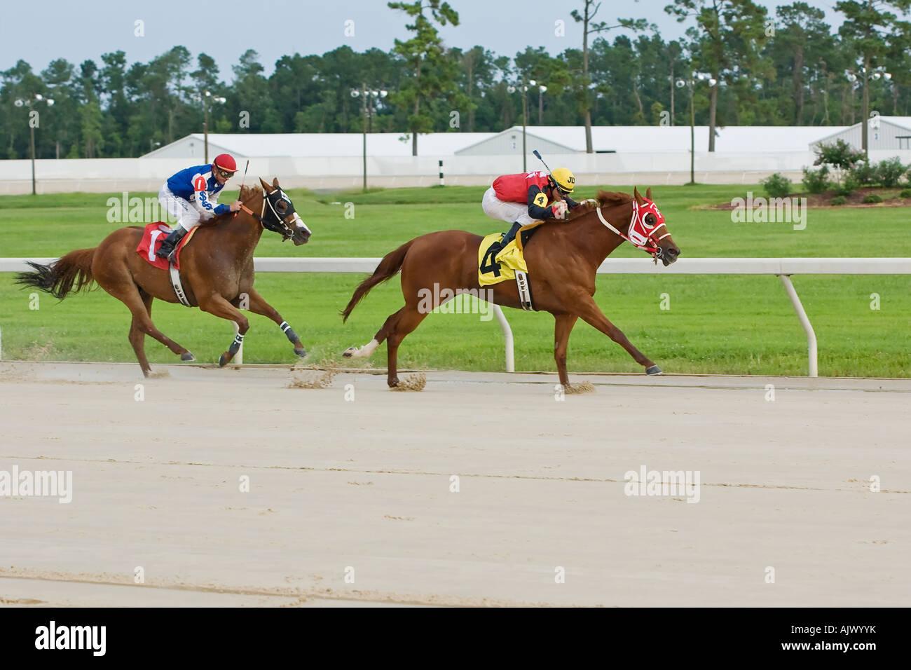 Quarter Horse Racing - Stock Image