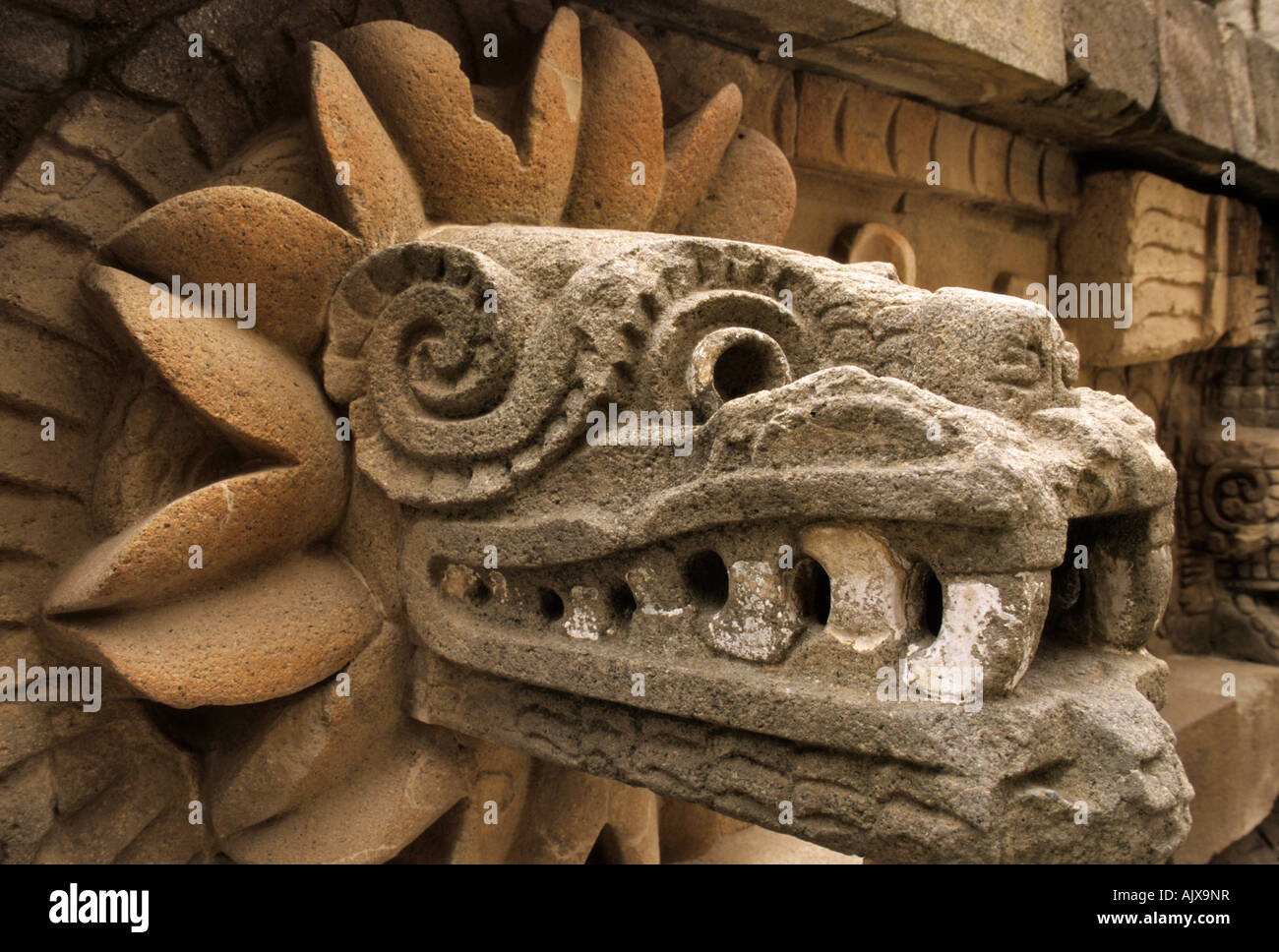 Aztec Serpent Head