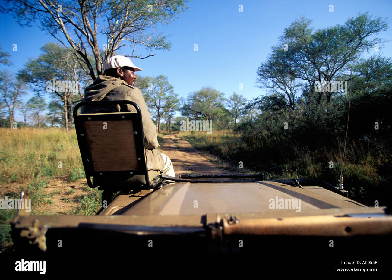 5c1b0e727511 tracker on game drive Kruger National Park South Africa Stock Photo ...