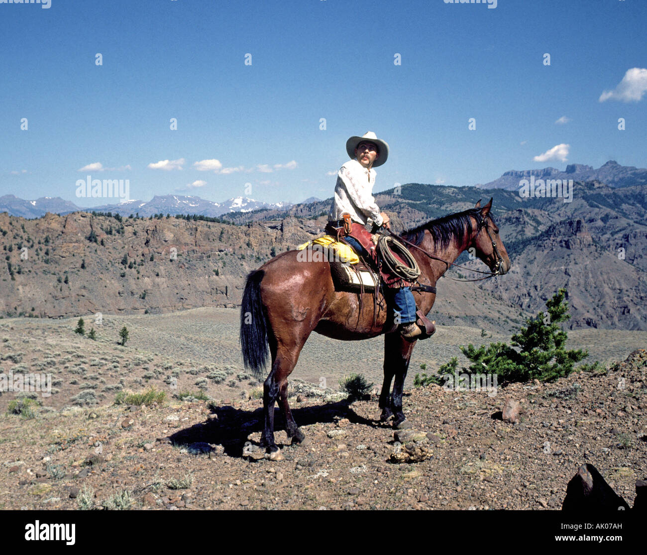 Cow Puncher Stock Photos Amp Cow Puncher Stock Images Alamy