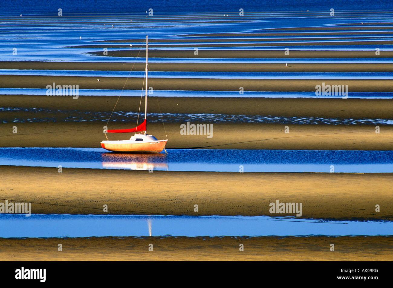 Sailboat anchored in tidal flats, Cape Cod Bay, Eastham, Cape Cod, MA - Stock Image