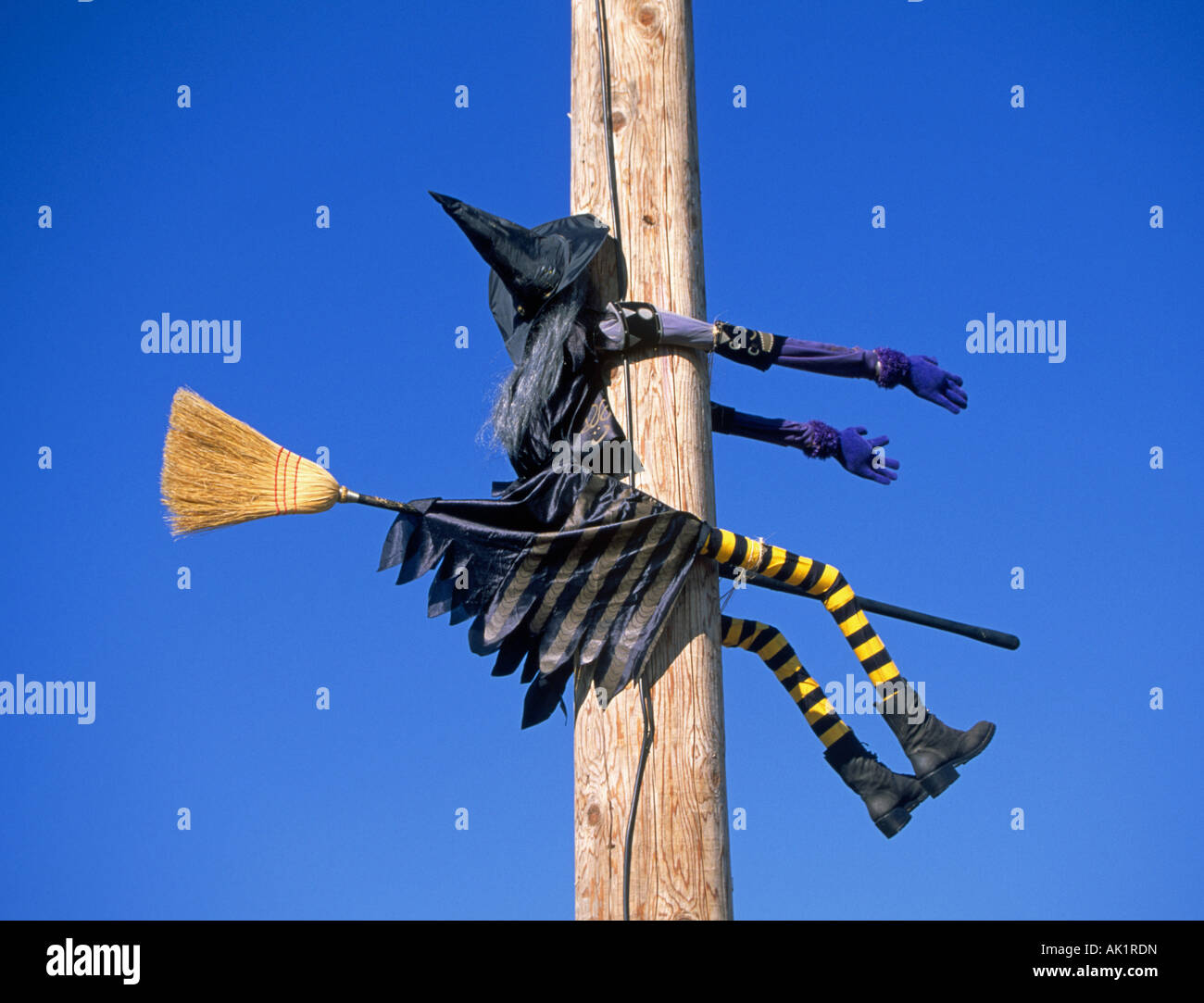 Witch On Pole Stock Photos Amp Witch On Pole Stock Images